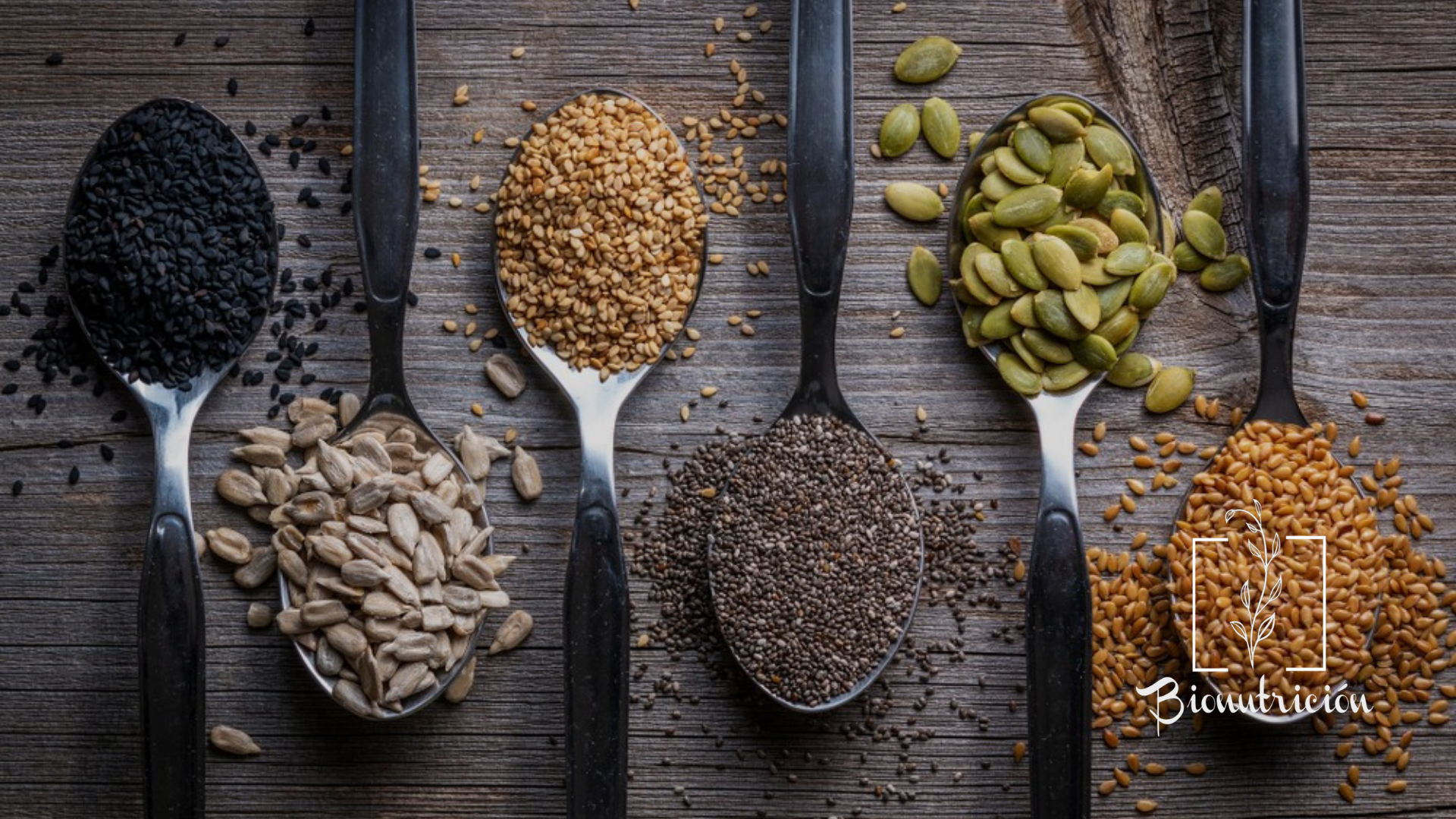 Las semillas: beneficios y propiedades nutricionales- Bionutrición Ortomolecular