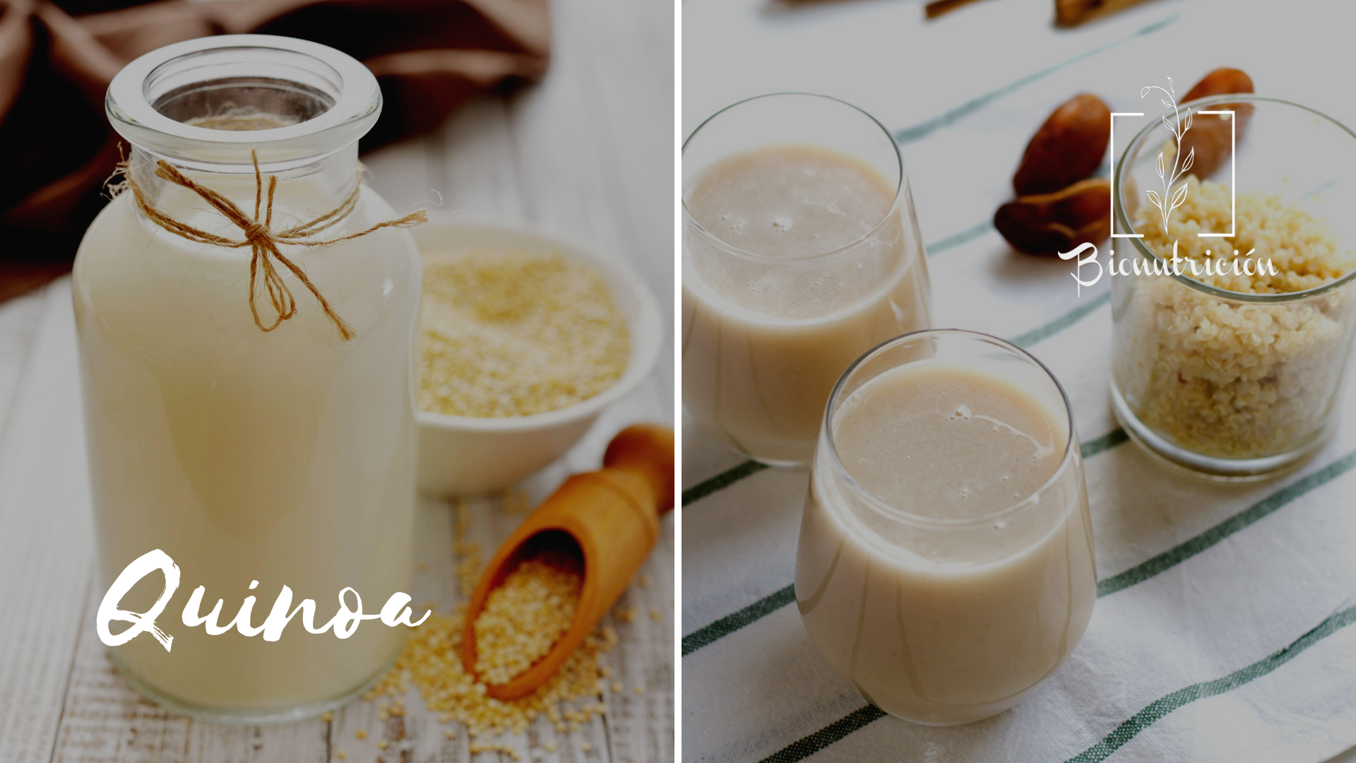 Propiedades de la leche de quinoa - Bionutrición Ortomolecular