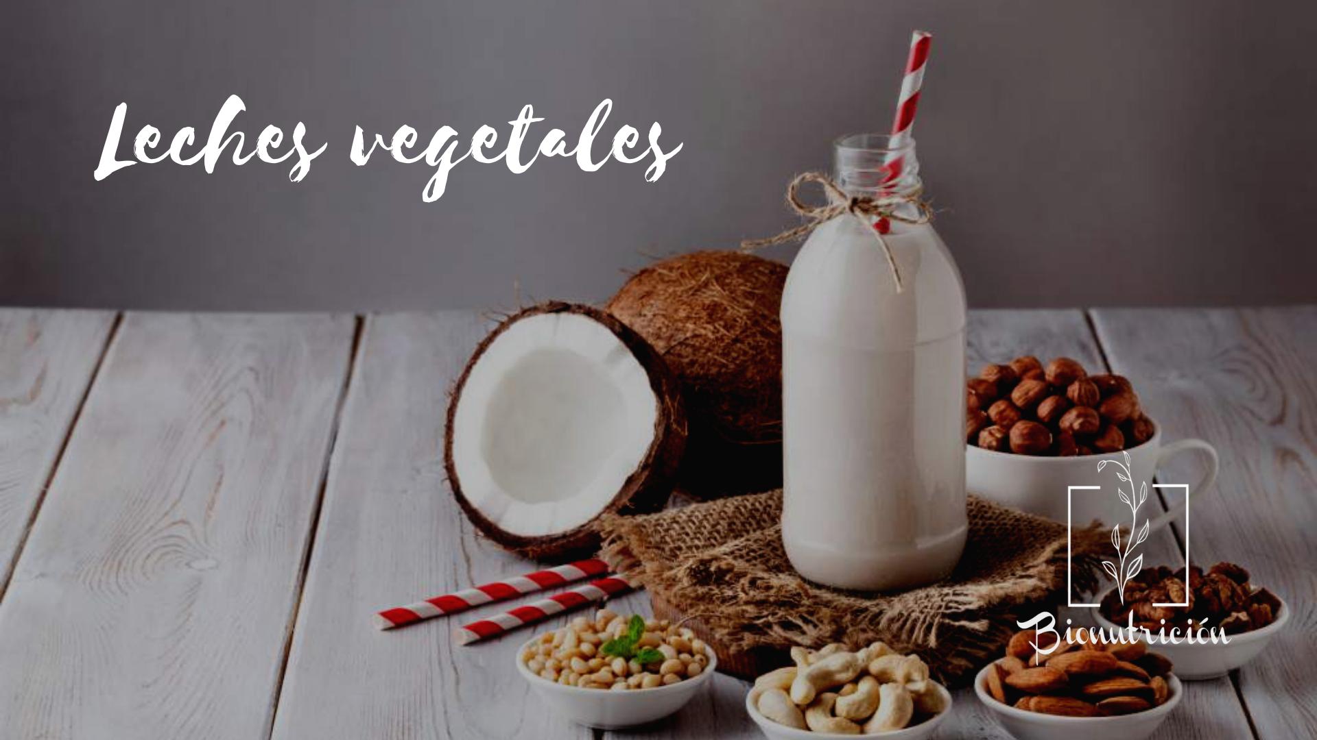 Propiedades de las leches vegetales- Bionutrición Ortomolecular